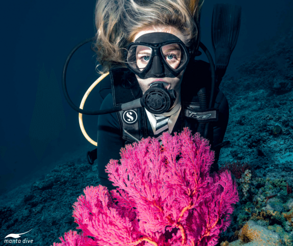 Diver and bright pink fan coral