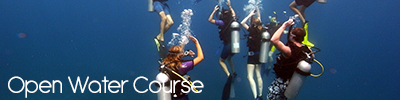 openwatercourse new